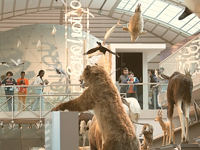 Young visitors in our Gallery of Evolution