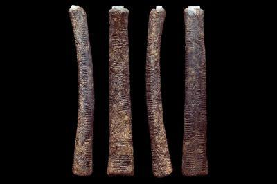 Photo des 4 faces du bâton d'Ishango