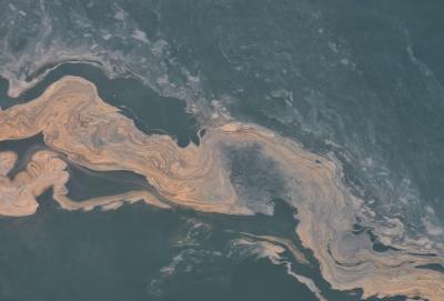 Floraison de Noctiluca sur le banc de sable de Buitenratel, 15 août 2020, documenté depuis l'avion de surveillance de l'IRSNB (© IRSNB/UGMM)