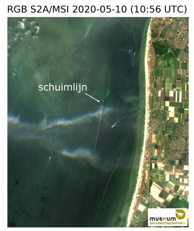 Schuimlijnen op zee (ten zuidwesten van Den Helder) op 10 mei 2020 om 09:50 lokale tijd op basis van een satellietbeeld van Sentinel-2. ©KBIN/REMSEM