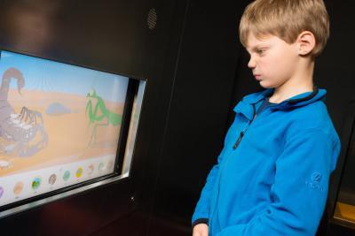 Doorheen de expo tonen huisgemaakte animatiefilmpjes de lotgevallen van de babydieren.