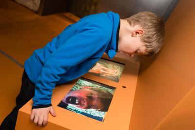 Activité au cours de laquelle les enfants peuvent imiter les grimaces des animaux ou en faire de plus drôles encore !