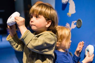 Activité au cours de laquelle les enfants découvrent qui mange quoi ?