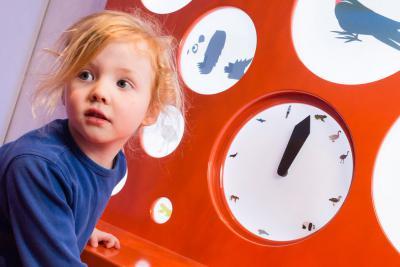 Activité au cours de laquelle les enfants découvrent combien de temps il faut pour devenir autonome chez différentes espèces, en tournant une manivelle