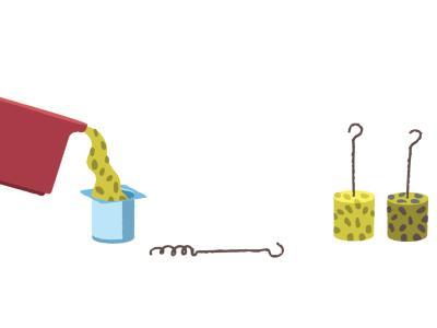 Comment faire des boules de graisse et de graines pour les oiseaux (en image)