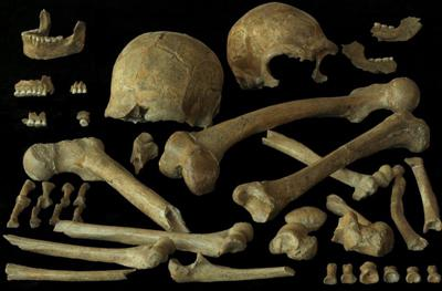 Human remnants found at the Spy Cave (Belgium) in 1886. (Foto: P. Semal, KBIN)