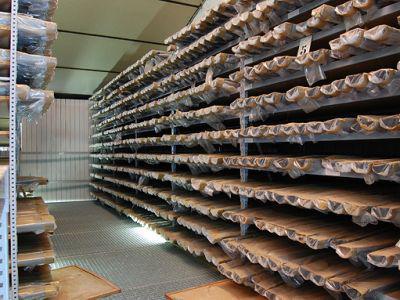 Bohrkerne in unserer geologischen Sammlung