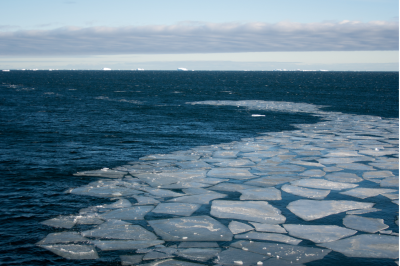 Southern Ocean Decade