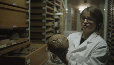 Paleo-antropoloog Caroline Pollet