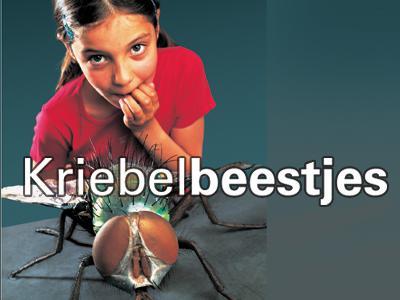 Visual van de tentoonstelling 'Kriebelbeestjes': een meisje staat naast een reusachtige vlieg en bijt op haar nagels van angst