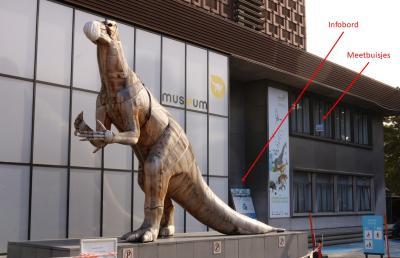 De metingen voor CurieuzenAir worden gedaan naast de ingang van het Museum voor Natuurwetenschappen. (Beeld: KBIN)