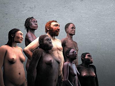 7 hominidés représentant la Galerie de l'Homme