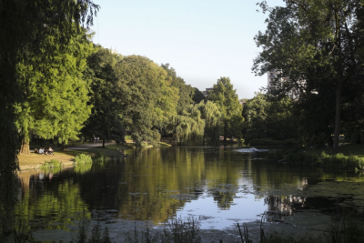 Lake in the Leopold Park
