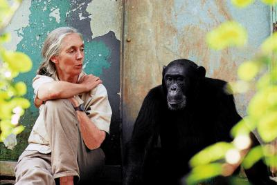 Jane Goodall (Photo : Michael Neugebauer)