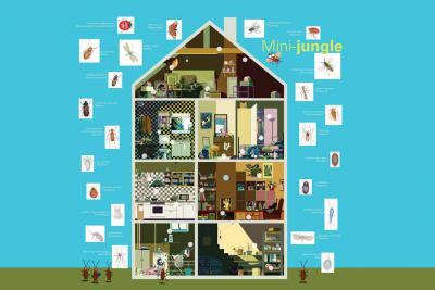 tekening van een huis zonder façade waar de kinderen de insecten moeten verplaatsen