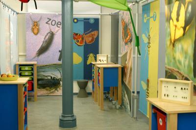 Dessins, photos, puzzles, boîtes à insectes, binoculaires, loupes, vivarium… permettent aux enfants de déterminer différents insectes.
