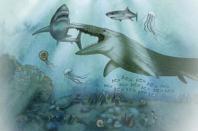 Mosasauriër terwijl hij een haai aanvalt (illustratie uit de Zaal van de Mosasauriërs)