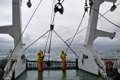 Vissen aan boord van RV Belgica (Foto ILVO).