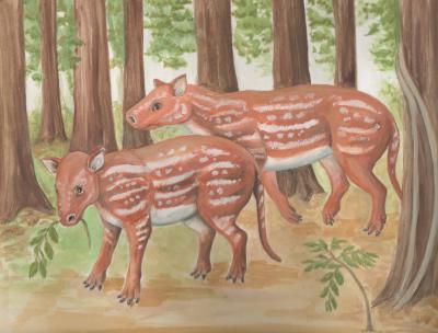 Artistieke impressie van Cambaytherium thewissi