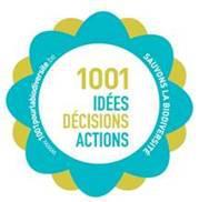1001 Idées et Décisions