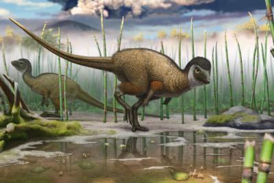 Artistieke impressie van Kulindadromeus zabaikalicus, de primitieve gevederde dinosaurus (© Andrey Atuchin)