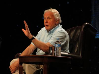 De Britse documentairemaker Sir David Attenborough werd 90 dit jaar. (Foto: Jeaneeem, Flickr)