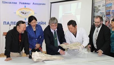 Paleontoloog Pascal Godefroit onthult de fossielen tijdens een ceremonie in Ulaanbaatar (Mongolië).