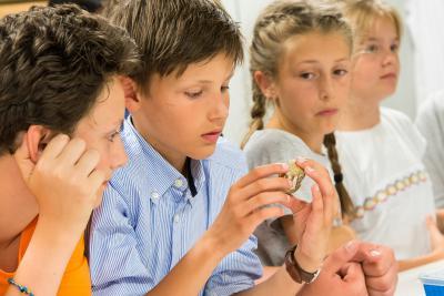 Des élèves manipulant avec précaution un morceau de mâchoire d'un gavial fossile dans un des ateliers de préparation de Paléontologie (photo: Thierry Hubin / IRNSB)