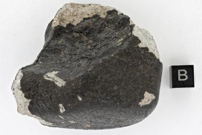 La météorite de Tintigny, la sixième tombée et retrouvée en Belgique (photo : IRSNB).