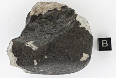 Meteoriet van Titigny, de zesde die in België neerkwam en is gevonden. (Foto: KBIN)