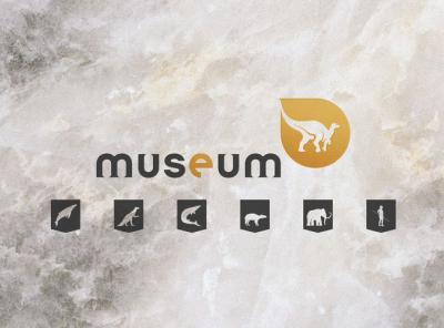 'Onze Natuurlijke Selectie': animatievideo's over zes niet-te-missen Museumstukken. (Beeld: KBIN)
