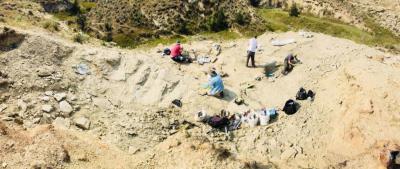 Le site de fouilles au Wyoming (photo : IRSNB)