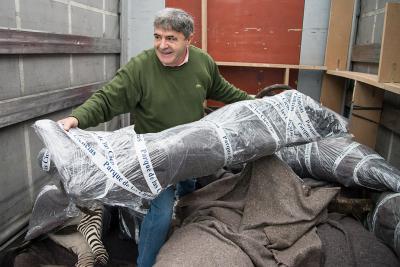 L'Espagnol Antonio Perez, artiste taxidermiste, avec un des animaux qu'il a naturalisés
