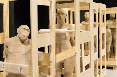 Modèles en 3D de quelques-uns de nos prédécesseurs (photo: Thierry Hubin, IRSNB)