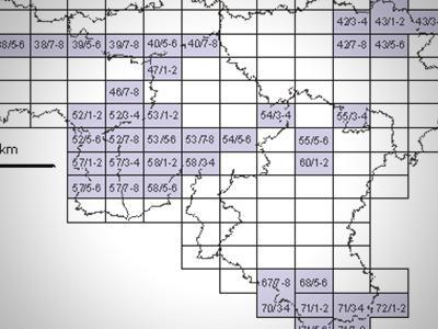 Walloon maps