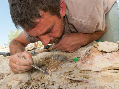 Scientist at work during excavation