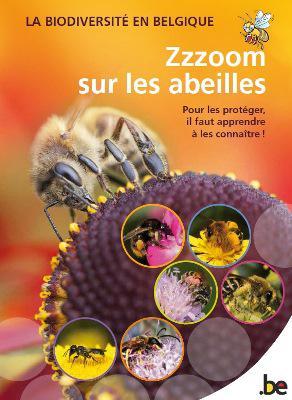 """Couverture de la brochure """"Zzzoom sur les abeilles"""" publiée en 2015"""
