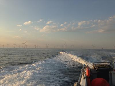 Parc à éoliennes C-Power