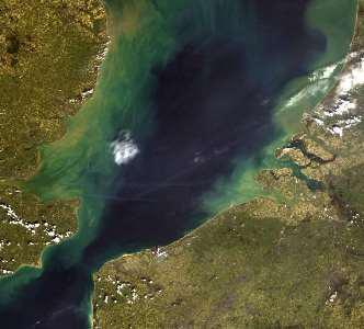 Satellite image MERIS