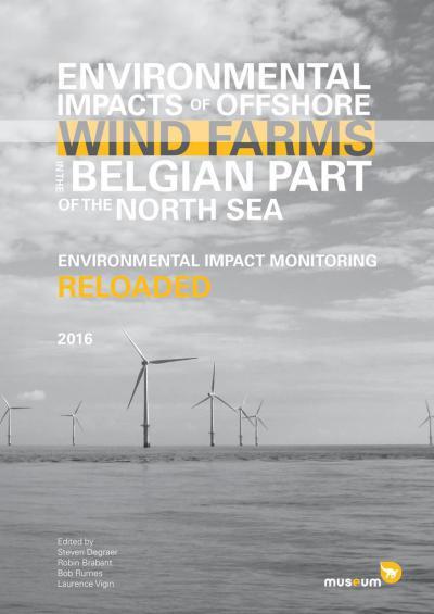 Rapport: l'impact environnemental des parcs éoliens en eaux belges