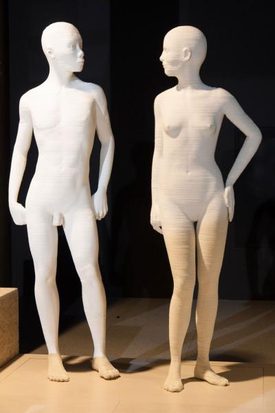 rondleiding menselijk lichaam