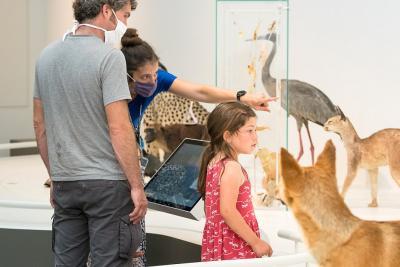 Une famille en visite guidée dans la Galerie Planète Vivante (photo : Thierry Hubin, IRSNB)