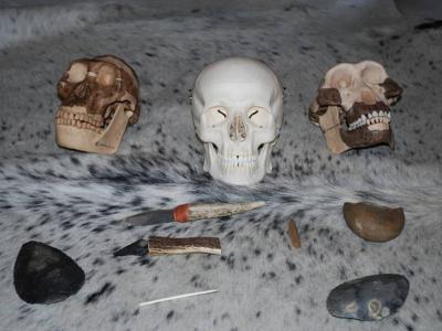atelier prehistorie