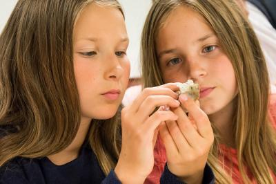 Twee jonge meisjes observeren een fossiel van dichtbij (foto: Thierry Hubin)