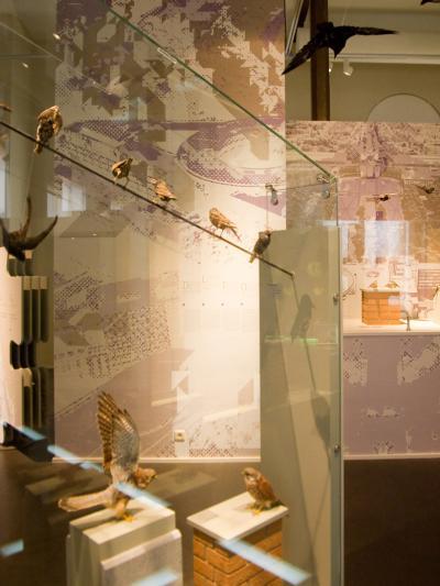 salle biodiversité
