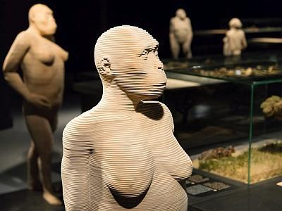reconstitutions 3D de 3 de nos prédécesseurs présentés dans la Galerie de l'Homme (photo : Thierry Hubin, IRSNB)