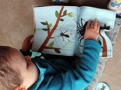 Un jeune enfant découvre un livre d'activités en tissu sur les p'tites bêtes (photo: Coralie Boeykens / IRSNB)