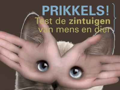 Visual van de tentoonstelling 'Prikkels!'