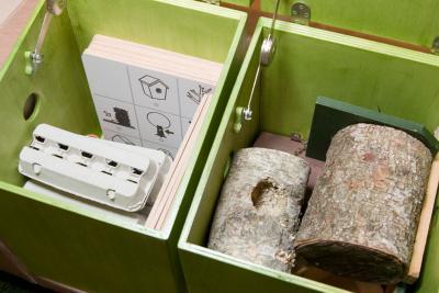 een doos met allerlei nesten en een andere met fiches over stadsvogels en hun eieren