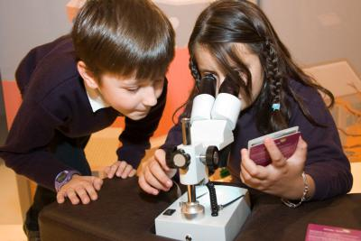 Een kind bekijkt een pluim onder de microscoop.